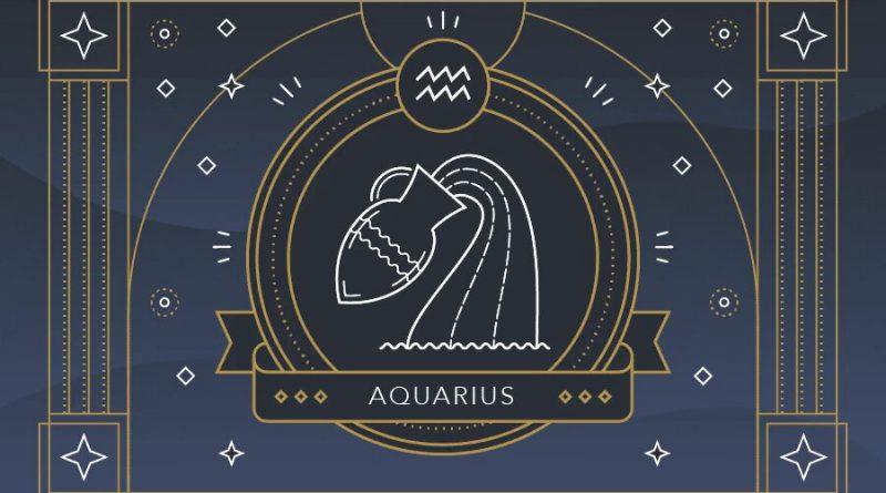 cómo son los acuario
