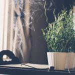Cómo hacer una limpieza energética durante la cuarentena